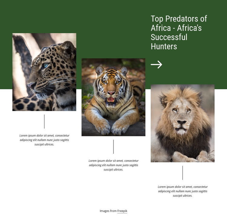 Africa's Successful Hunters One Page Template