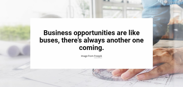 Business Opportunities Landing Page