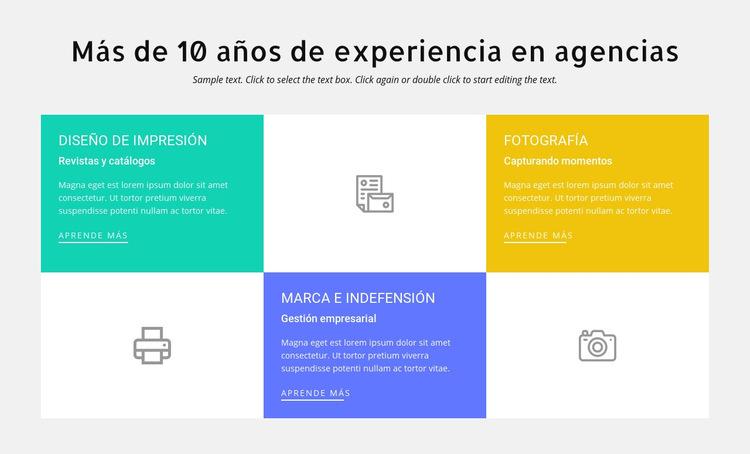 10 años de experiencia en diseño Plantilla de sitio web