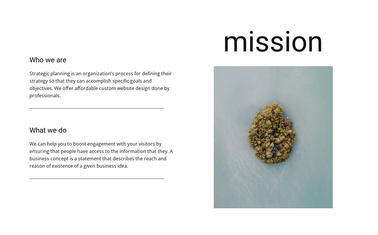 Our mission and goals  One Page Template