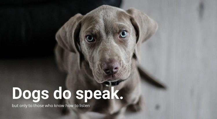 Understanding Your Pet's Website Template