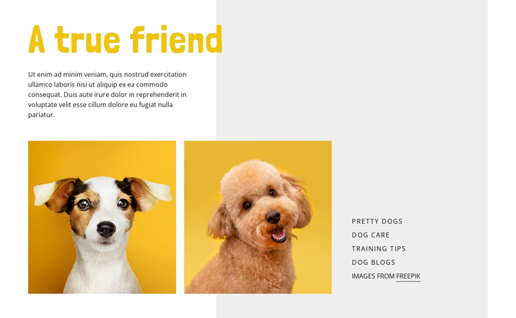 Become a Dog Trainer Website Template