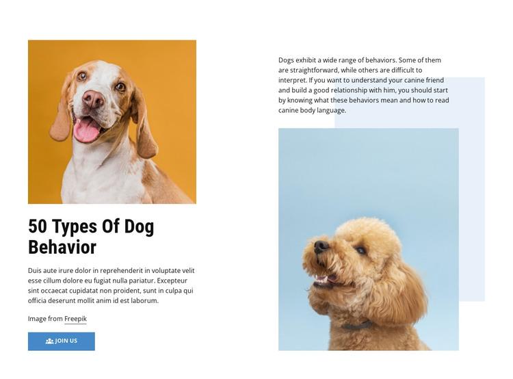 Quality Dog Behavior Courses HTML Template