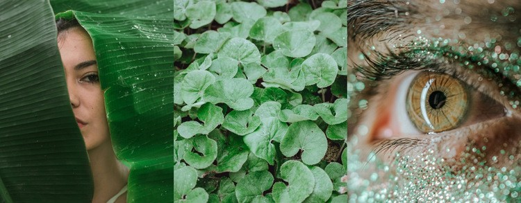 Зеленый имидж мода HTML шаблон
