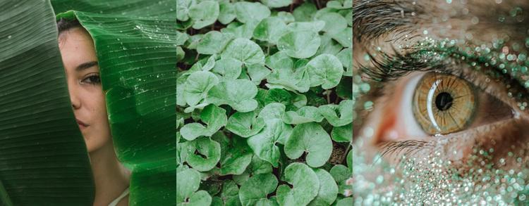 Green image fashion Website Design