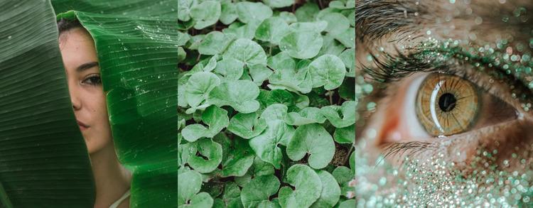 Green image fashion Website Mockup