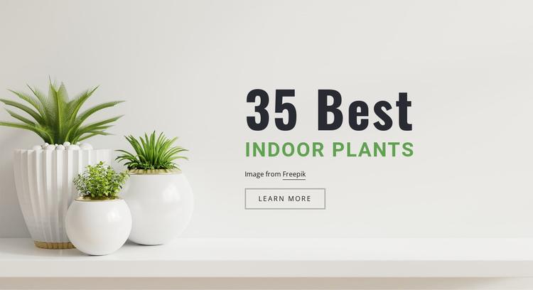 Plants in interior design Website Builder Software
