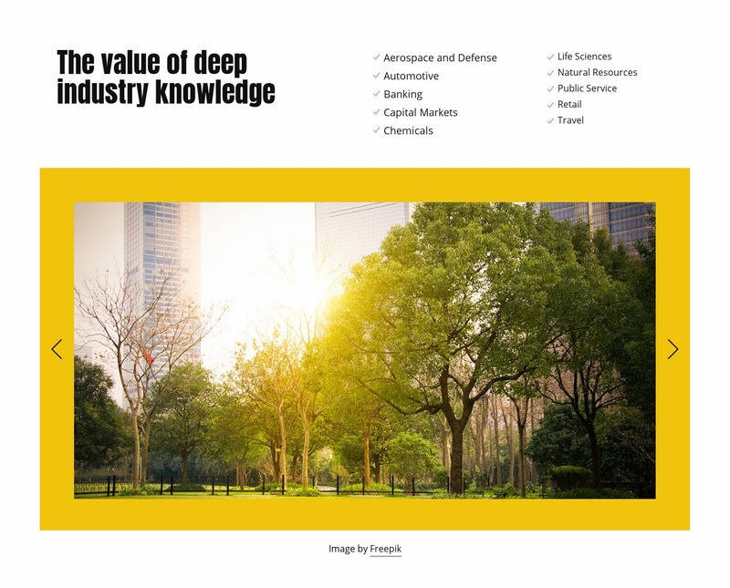 Business strategy and scopes Web Page Designer