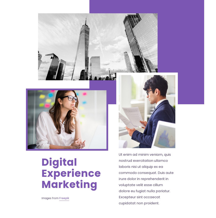 Digital experience marketing Web Design