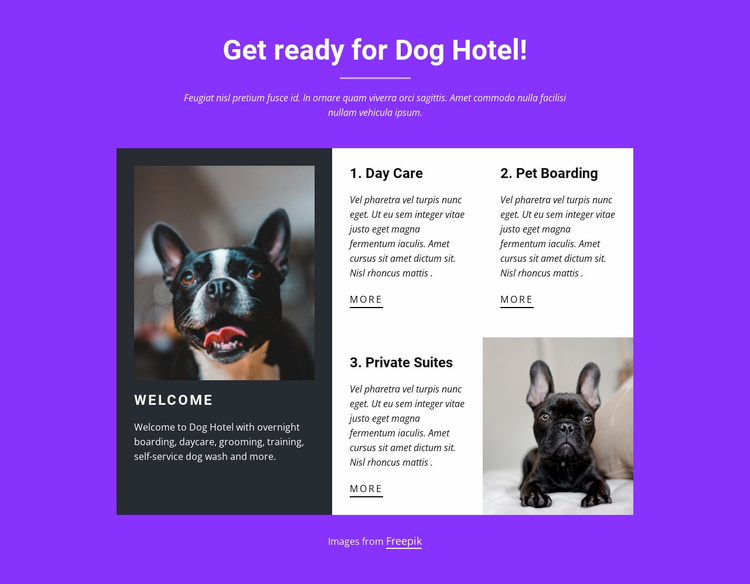 Dog boarding services Website Template