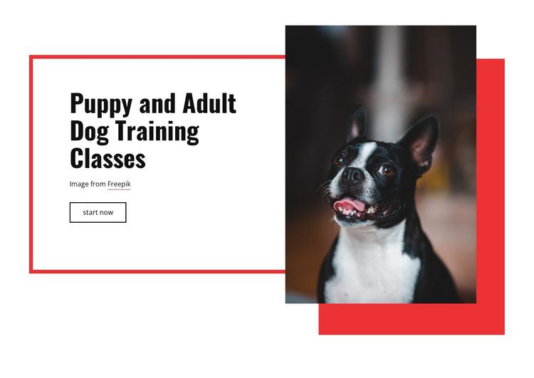 Poppy training classes HTML Template