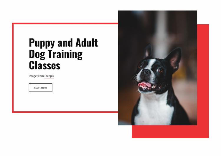Poppy training classes Website Template