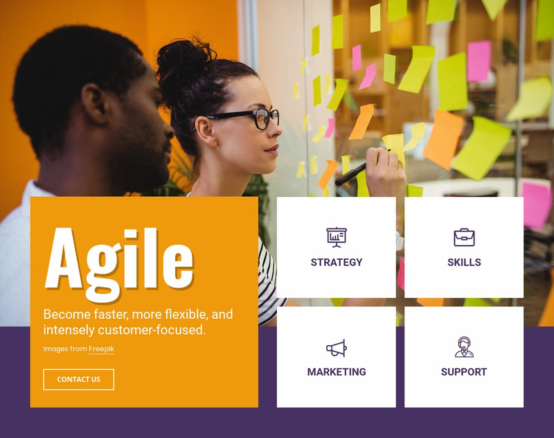 Agile consulting services Web Page Designer