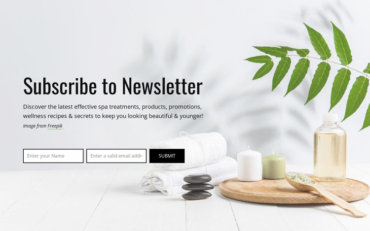 Subscribe to newsletter Html Website Builder
