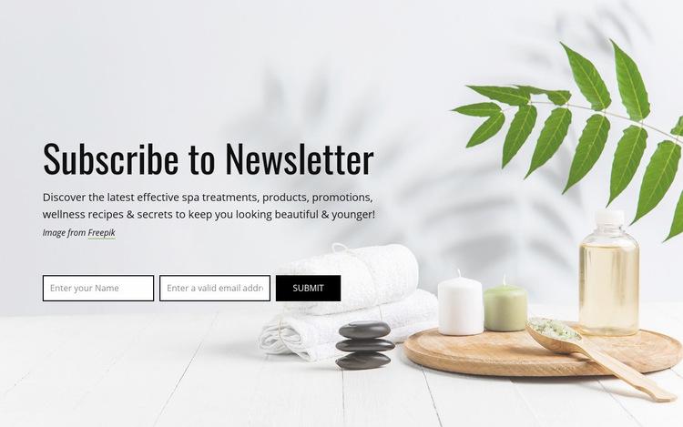Subscribe to newsletter WordPress Website