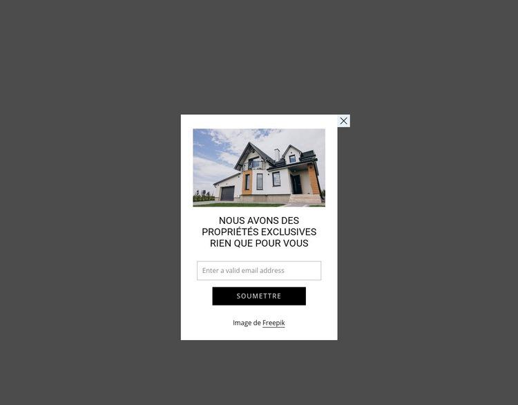 Popup avec image et formulaire Modèle de site Web