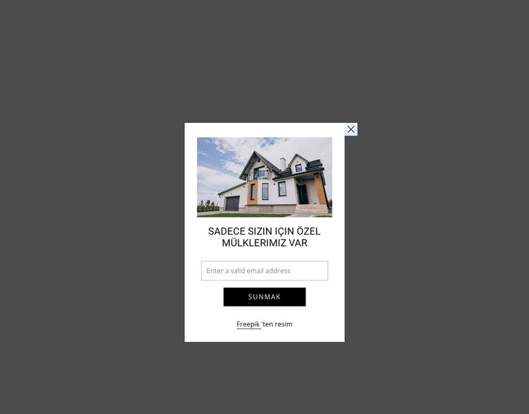 Resim ve form ile açılır pencere Web Sitesi Şablonu