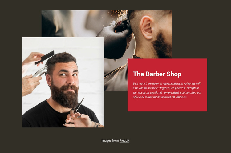 Barber fashion shop Landing Page
