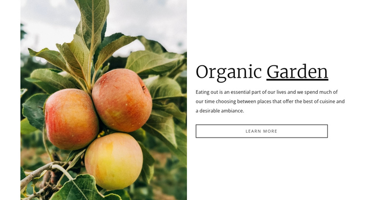 Organic garden food Website Builder Software
