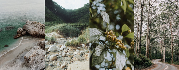 Gallery with nature photo HTML Template