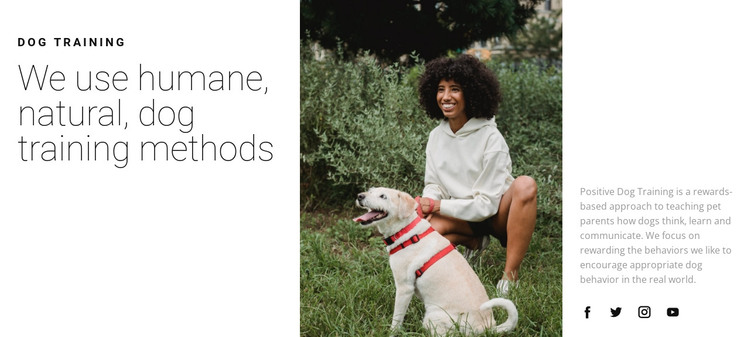 Dog walking HTML Template