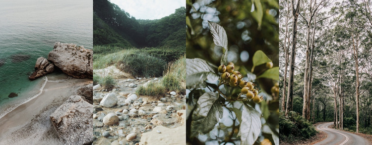 Gallery with nature photo Website Mockup