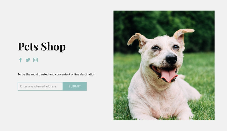 Buy everything for your dog HTML Template