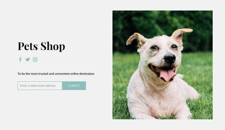 Buy everything for your dog WordPress Theme