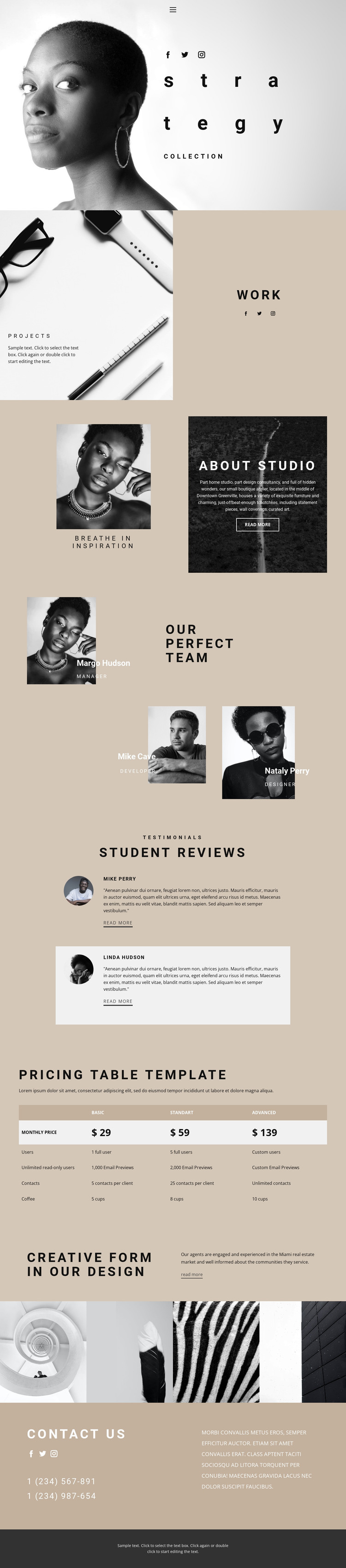 Strategy and grow HTML Template
