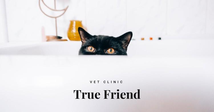 True friends CSS Template