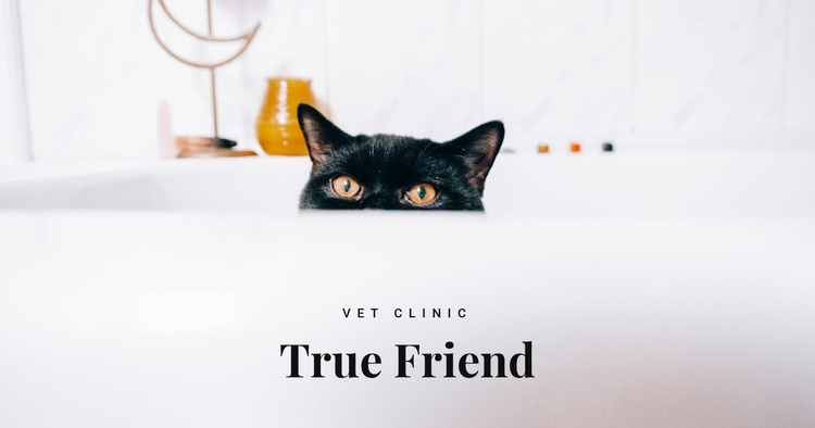True friends Website Template