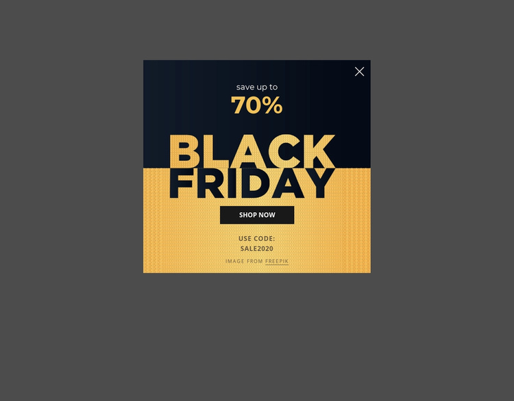 Black friday popup Website Template