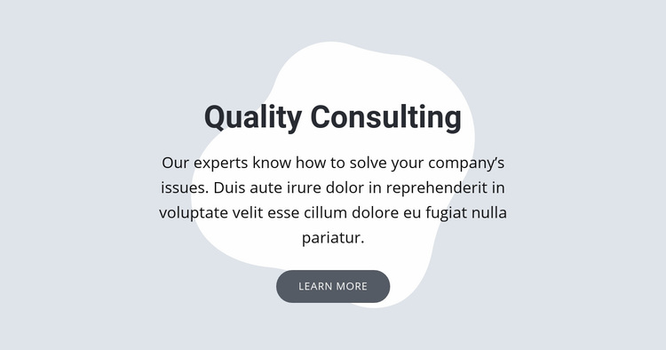 Quality consulting Web Page Designer