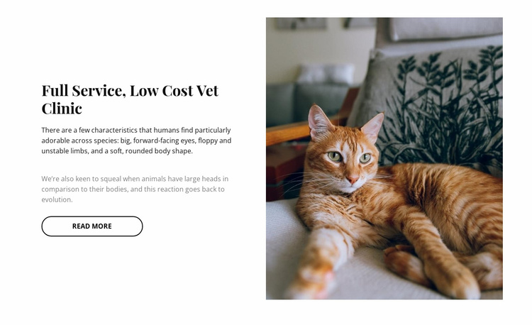Innovation pets clinic Website Template