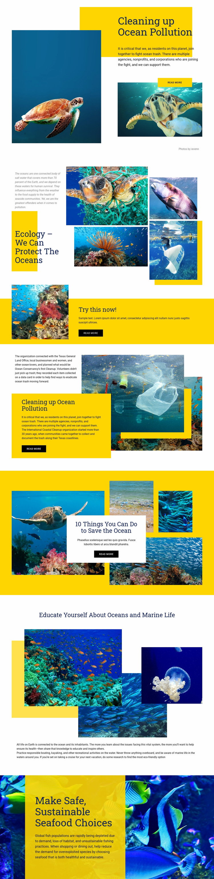 Protect The Oceans Web Page Design