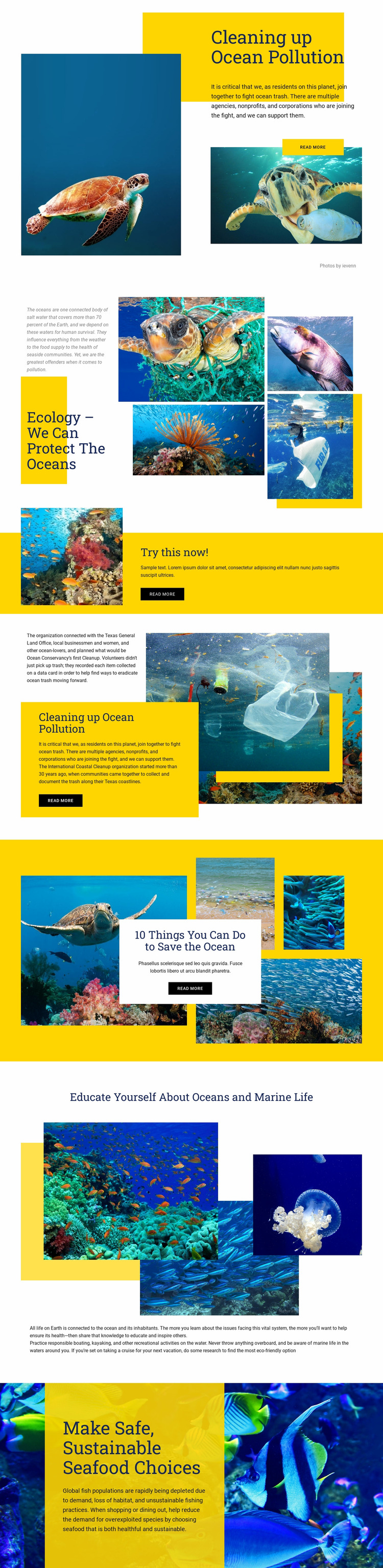 Protect The Oceans Website Mockup