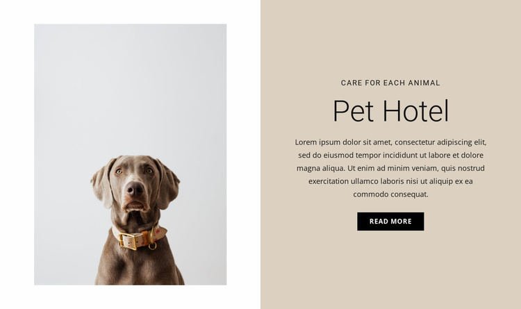 Hotel for animals Website Template