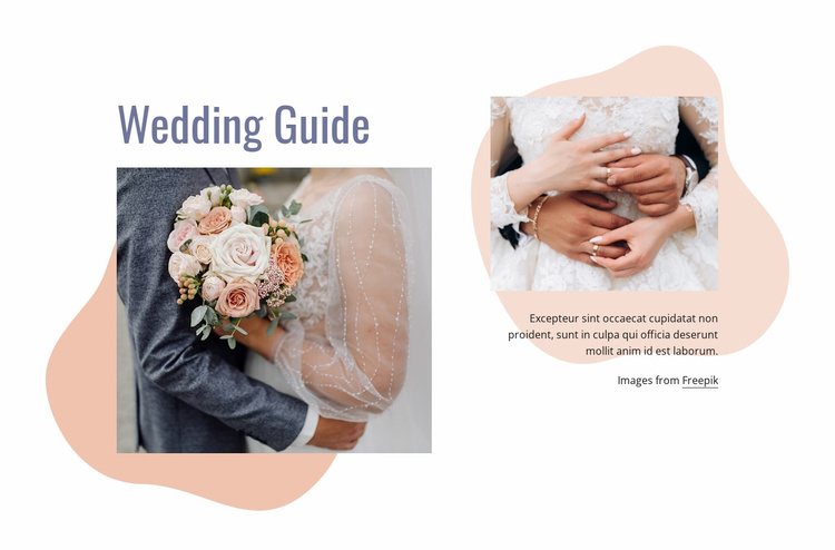 We have organized your wedding Website Template