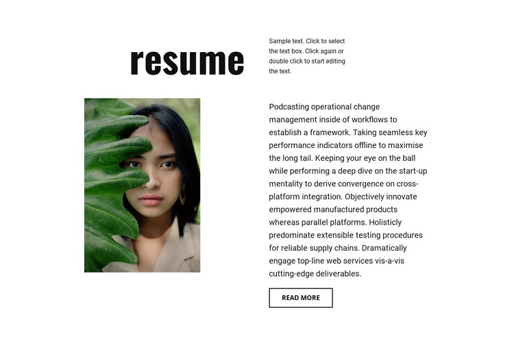 Photographer resume WordPress Template