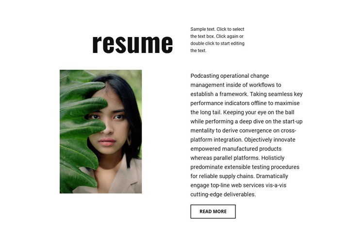 Photographer resume WordPress Theme