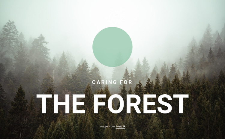 Caring for the forest Web Page Design