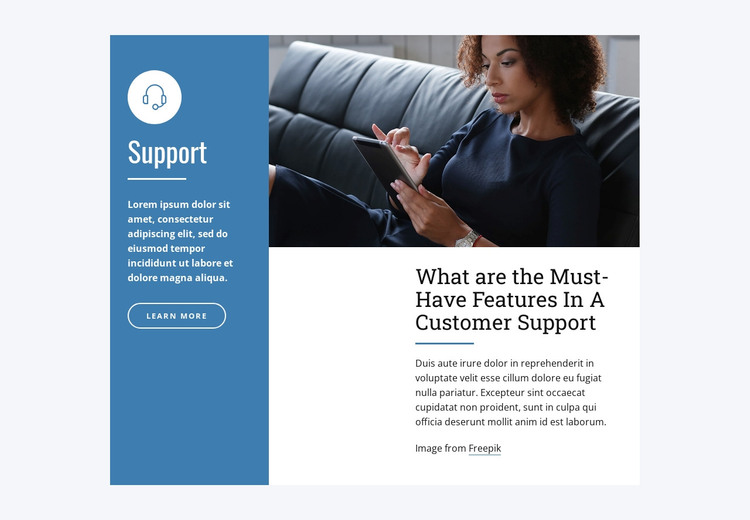 Live Chat Support WordPress Theme