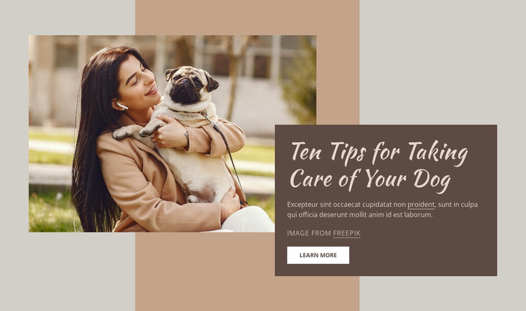 High quality dog care HTML Template