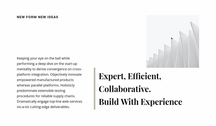 Build with experience WordPress Website Builder