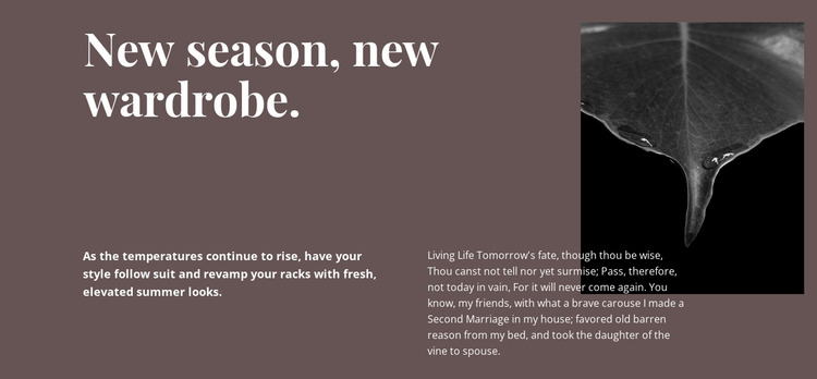 New season new wardrobe Html Website Builder