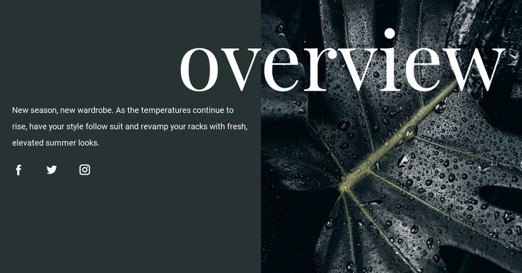 Design overview Website Template