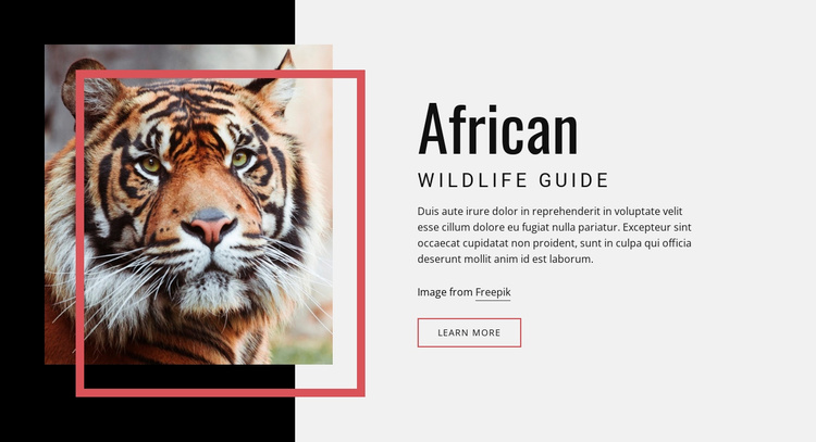 African wildlife guide Landing Page