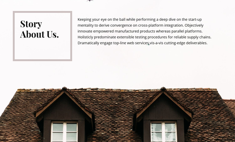 Story about us Homepage Design