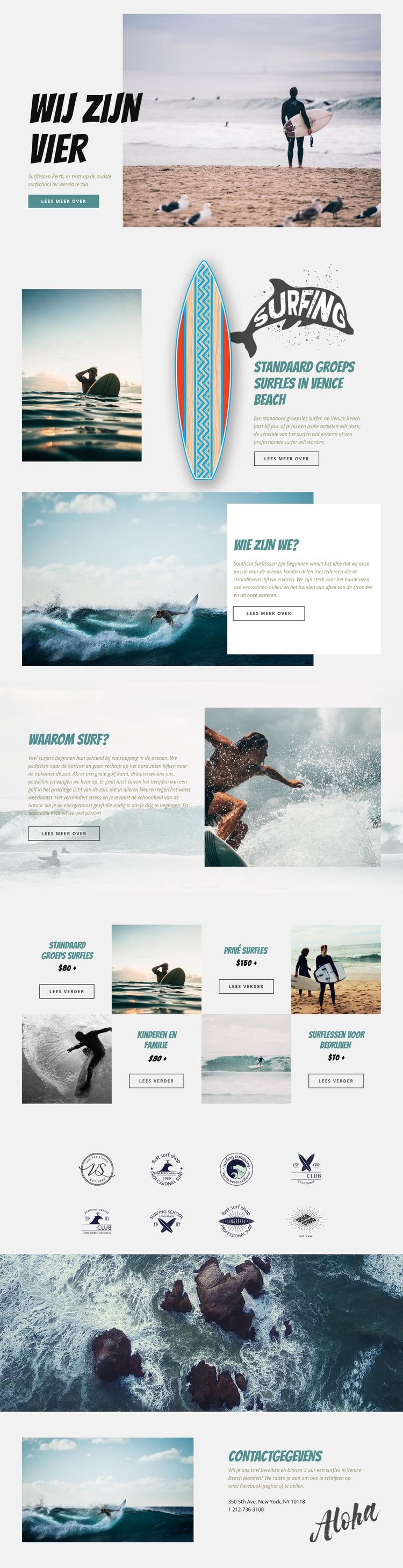 Surfen Website sjabloon