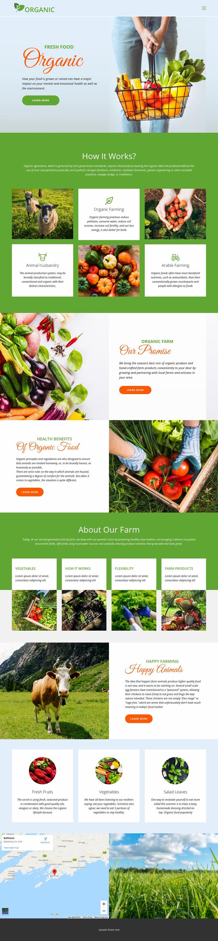 Eat best organic food Web Page Designer